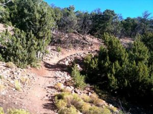 Mountain Biking The Dale Ball Trails, Santa Fe, Nm, Usa By Trailsource.com